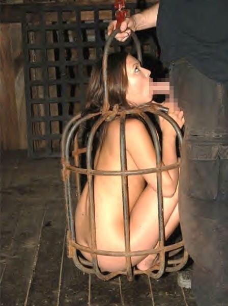 【※閲覧注意※】本 場 の 女 子 鉄 檻 監 禁 事 案 、 割 と ガ チ が い そ う で 引 い た・・・(画像あり)・25枚目