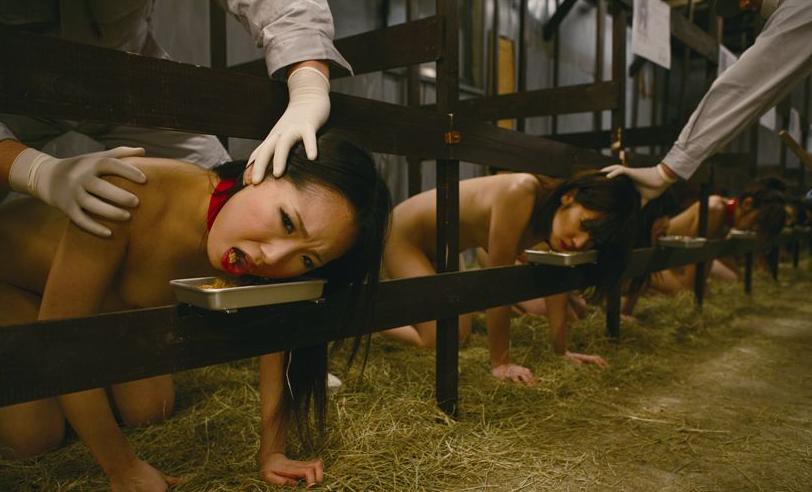 【※胸糞注意※】こ れ か ら 家 畜 と し て 生 き て い く女 性 達 の 姿 を ご 覧 下 さ い。(画像あり)・11枚目