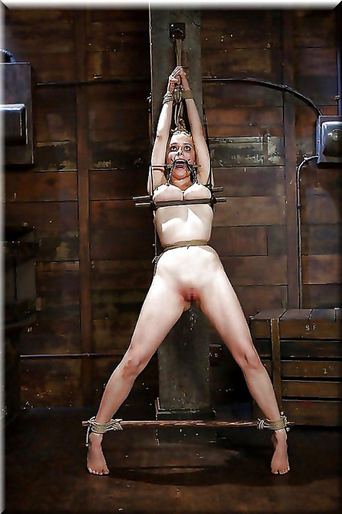 【※閲覧注意※】変態セレブに買われた性奴隷のその後をご覧下さい。 これはいっそ死にたくなること請け合い。。(画像26枚)・23枚目