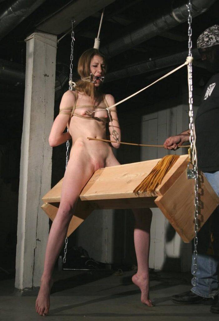 【※閲覧注意】ドM女でも嫌う最も最低な調教方法がこちら。。。これマンコ裂けるやつや・・・・・(画像あり)・18枚目