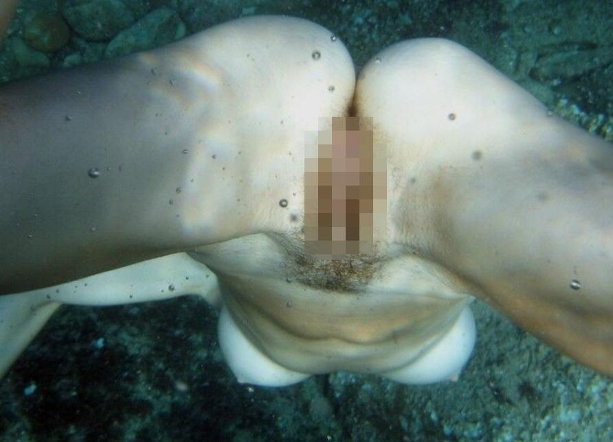 【※朗報】ワ イ 、 全 裸 で 泳 ぐ ま ん さ ん を 発 見 し た の で 防 水 携 帯 で 撮 影 を 強 行。(画像あり)・5枚目