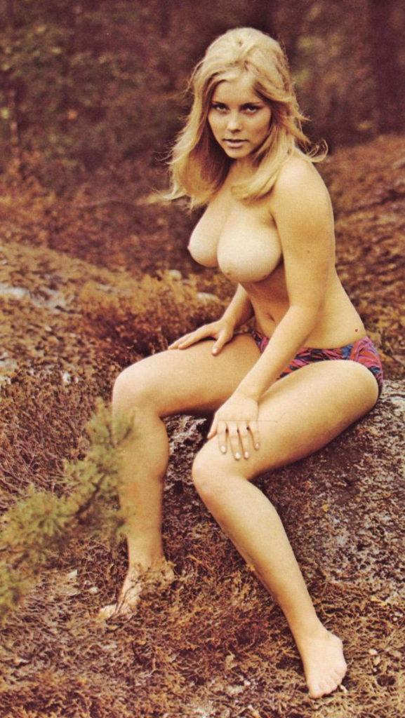 【レトロ】80年代アメリカンスタイルのヌード写真を集めた結果 →フォトショ無しでも今より斜め上な件wwwww(※画像30枚)・13枚目