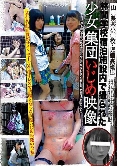 【※胸糞注意※】女の子同士の性的イジメ現場。ハード過ぎて自殺不可避・・・(画像あり)・25枚目