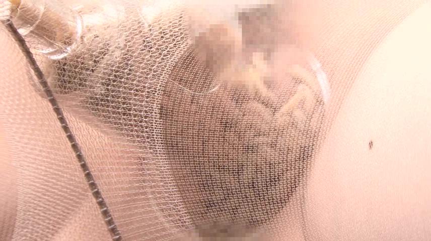 【※超閲覧注意】マンコにウジ虫を大量にブッ込むガイジwwwwwwwwwwwwwwwwwwwwww(GIFあり)・2枚目