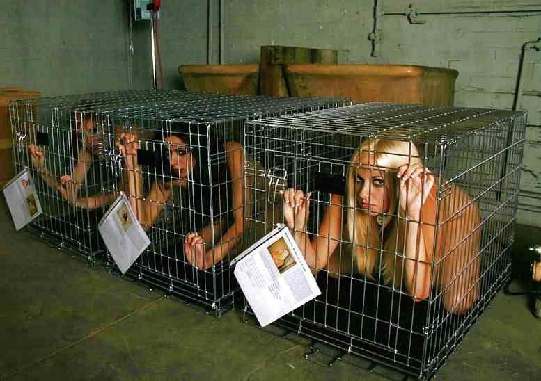 【※閲覧注意】性奴隷として売買された女性の末路・・・家畜以下とは。。(画像あり)・3枚目