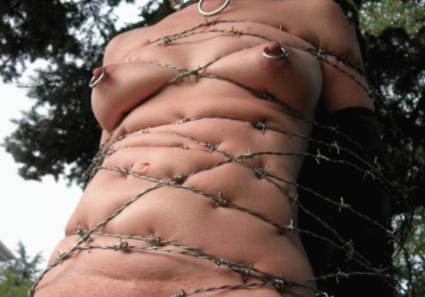 (閲覧注意)指導師「あ、ロープないわぁ…」→ 近所にあった有刺鉄線で縛ってみたでwwwwwwwwwwwwwwwwwwwwwwww(写真あり)