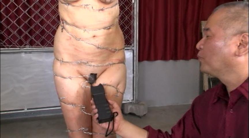 【閲覧注意】調教師「あ、ロープないわぁ…」→ 近所にあった有刺鉄線で縛ってみたでwwwwwwwwwwww(画像あり)・13枚目