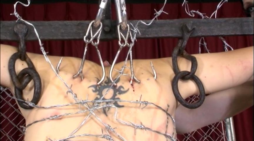 【閲覧注意】調教師「あ、ロープないわぁ…」→ 近所にあった有刺鉄線で縛ってみたでwwwwwwwwwwww(画像あり)・17枚目