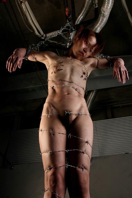 【閲覧注意】調教師「あ、ロープないわぁ…」→ 近所にあった有刺鉄線で縛ってみたでwwwwwwwwwwww(画像あり)・18枚目