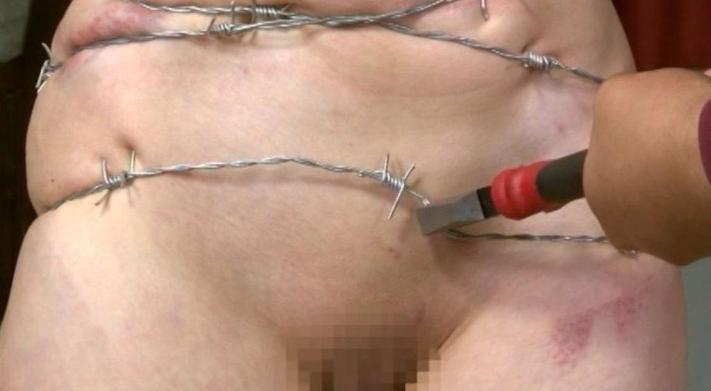 【閲覧注意】調教師「あ、ロープないわぁ…」→ 近所にあった有刺鉄線で縛ってみたでwwwwwwwwwwww(画像あり)・20枚目