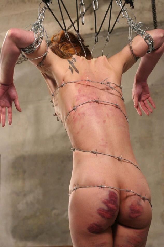 【閲覧注意】調教師「あ、ロープないわぁ…」→ 近所にあった有刺鉄線で縛ってみたでwwwwwwwwwwww(画像あり)・3枚目