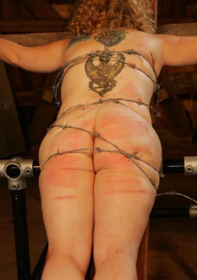 【閲覧注意】調教師「あ、ロープないわぁ…」→ 近所にあった有刺鉄線で縛ってみたでwwwwwwwwwwww(画像あり)・4枚目