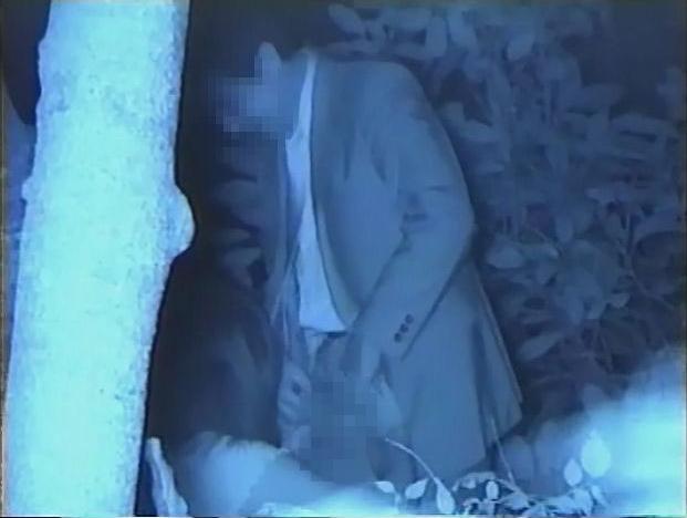 【※盗撮注意】深夜の公園を赤外線モードで撮影した結果wwwwwwwwww(画像あり)・4枚目