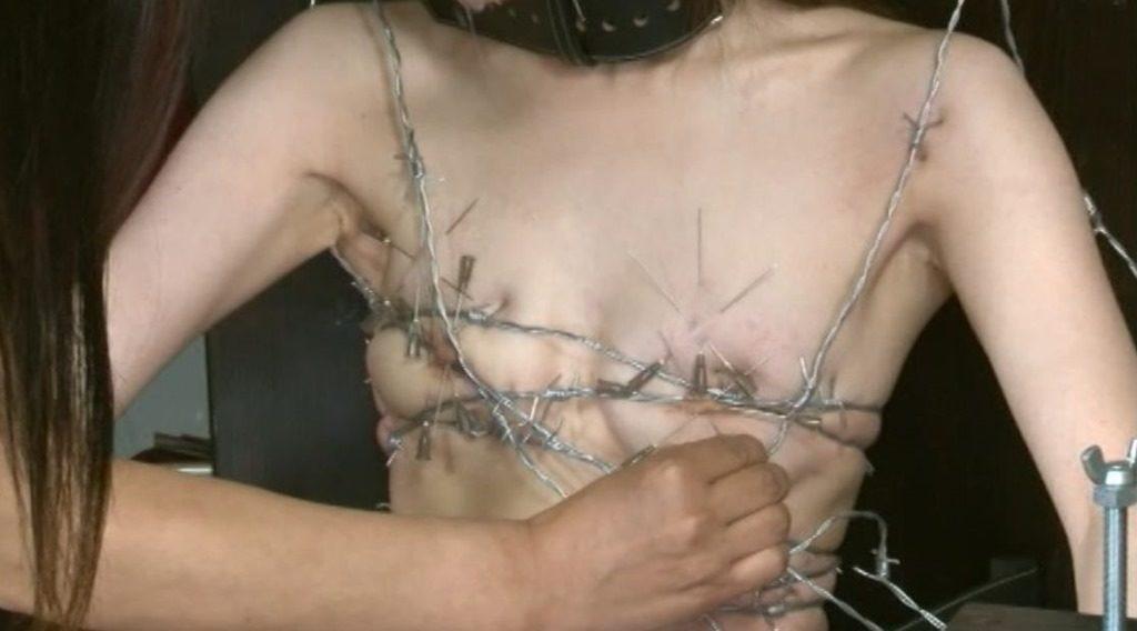 【閲覧注意】調教師「あ、ロープないわぁ…」→ 近所にあった有刺鉄線で縛ってみたでwwwwwwwwwwww(画像あり)・8枚目