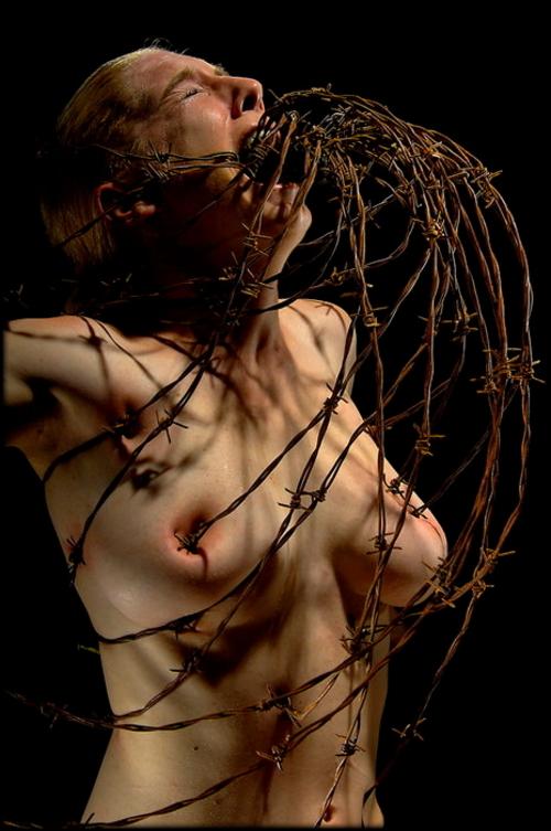 【閲覧注意】調教師「あ、ロープないわぁ…」→ 近所にあった有刺鉄線で縛ってみたでwwwwwwwwwwww(画像あり)・9枚目