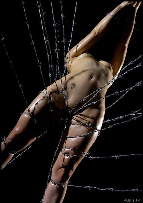 【※流血注意※】こういう変態プレイをしたがる女、有刺鉄線を使った調教画像をご覧ください(画像あり)・10枚目