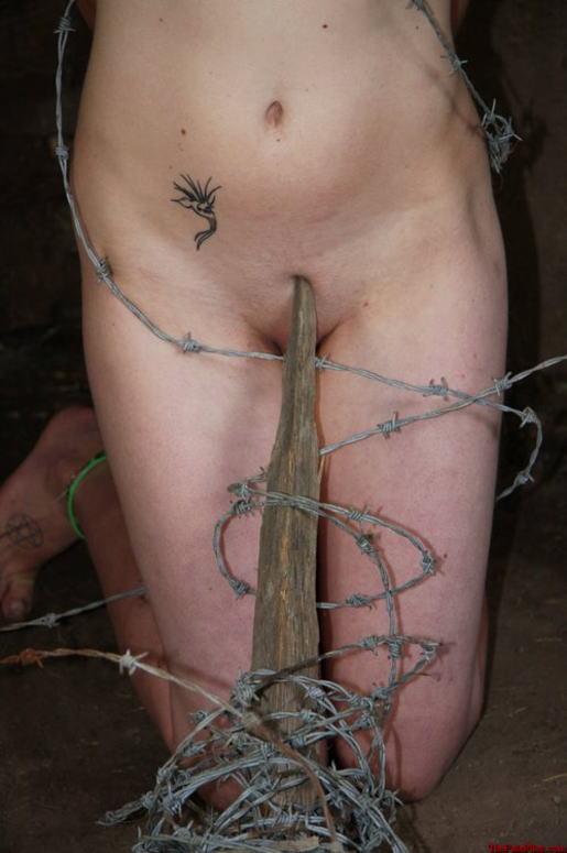 【※流血注意※】こういう変態プレイをしたがる女、有刺鉄線を使った調教画像をご覧ください(画像あり)・12枚目