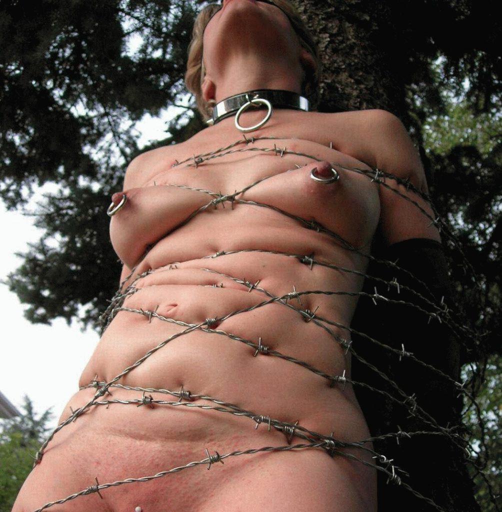 【※流血注意※】こういう変態プレイをしたがる女、有刺鉄線を使った調教画像をご覧ください(画像あり)・17枚目