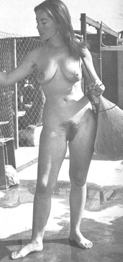 海外ポルノの女優さん、数十年前から身体がダイナマイトやったwwwwww(80枚)・69枚目