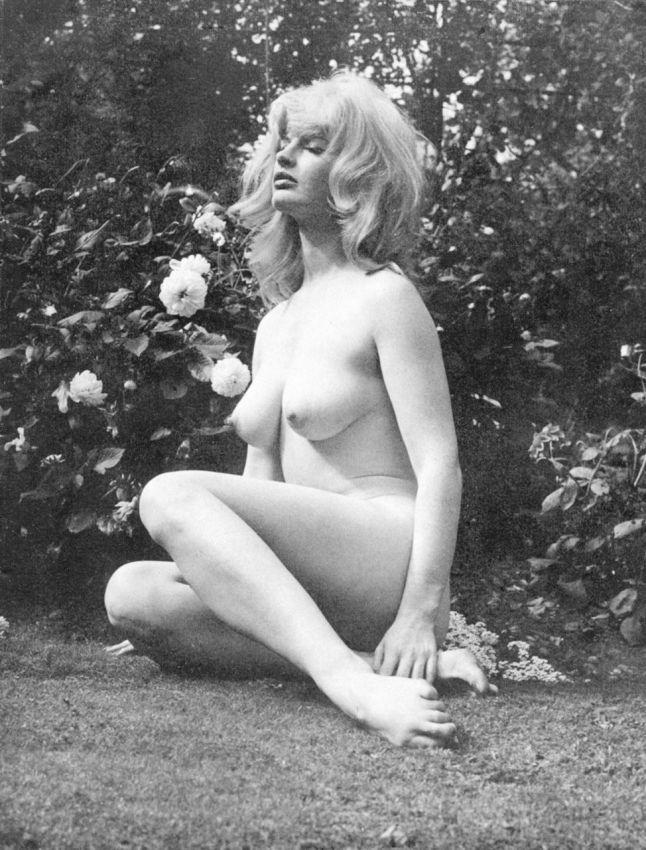 海外ポルノの女優さん、数十年前から身体がダイナマイトやったwwwwww(80枚)・51枚目