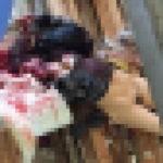 【超閲覧注意】レイプ被害にあった女性の遺体が酷すぎる。