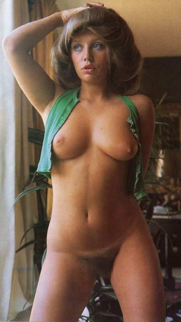 海外ポルノの女優さん、数十年前から身体がダイナマイトやったwwwwww(60枚)・10枚目