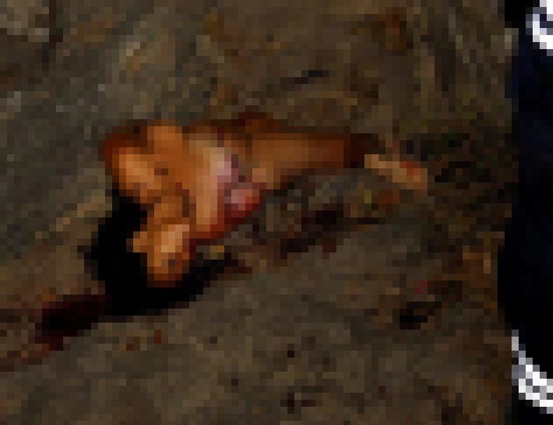 【※閲覧注意】レ イ プ 後 に 殺 害 さ れ た 女 性 た ち をご 覧 く だ さ い ・ ・ ・ (画像39枚)・18枚目