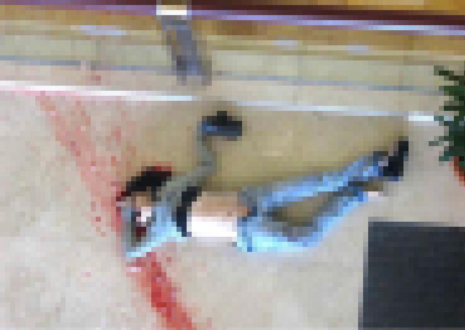 【※閲覧注意】レ イ プ 後 に 殺 害 さ れ た 女 性 た ち をご 覧 く だ さ い ・ ・ ・ (画像39枚)・6枚目