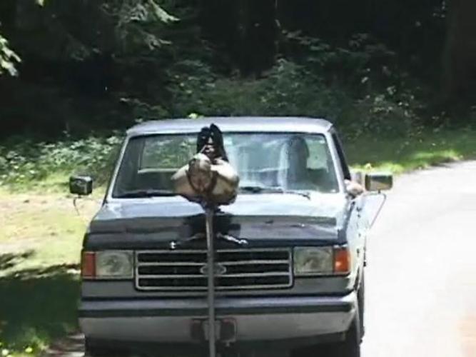 【エロ画像】女を人間と思ってない男のDOQ車がこちらです・・・・・・20枚目