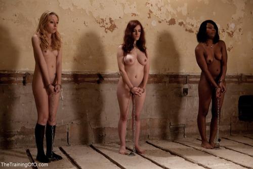 拉致された女性たちの末路…競り落とされたらもっと地獄が待ってる(画像あり)・15枚目