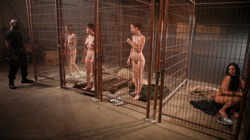 拉致された女性たちの末路…競り落とされたらもっと地獄が待ってる(画像あり)・9枚目